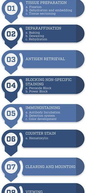 Overview of Immunohistochemistry (IHC)